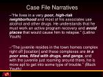 case file narratives