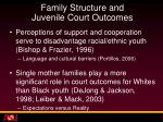 family structure and juvenile court outcomes1