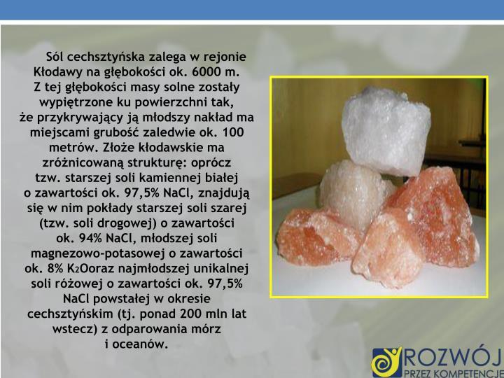 Sól cechsztyńska zalega w rejonie Kłodawy na głębokości ok. 6000 m.                Z tej głębokości masy solne zostały wypiętrzone ku powierzchni tak,               że przykrywający ją młodszy nakład ma miejscami grubość zaledwie ok. 100 metrów. Złoże kłodawskie ma zróżnicowaną strukturę: oprócz            tzw. starszej soli kamiennej białej                        o zawartości ok. 97,5% NaCl, znajdują się w nim pokłady starszej soli szarej (tzw. soli drogowej) o zawartości               ok. 94% NaCl, młodszej soli magnezowo-potasowej o zawartości   ok. 8% K