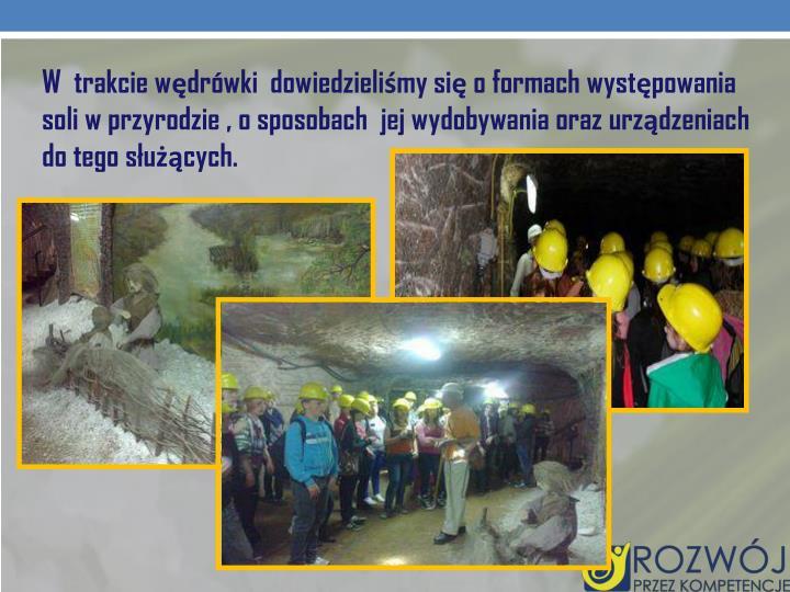 W trakcie wędrówki dowiedzieliśmy się o formach występowania soli w przyrodzie , o sposobach jej wydobywania oraz urządzeniach do tego służących.