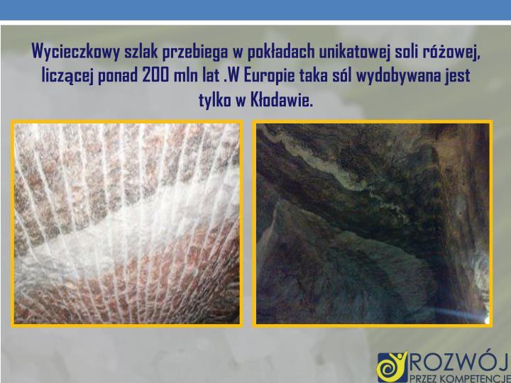 Wycieczkowy szlak przebiega w pokładach unikatowej soli różowej, liczącej ponad 200 mln lat .W Europie taka sól wydobywana jest tylko w Kłodawie.