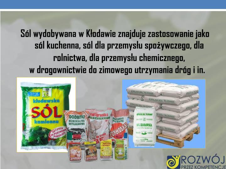 Sól wydobywana w Kłodawie znajduje zastosowanie jako sól kuchenna, sól dla przemysłu spożywczego, dla rolnictwa, dla przemysłu chemicznego,                                    w drogownictwie do zimowego utrzymania dróg i in.