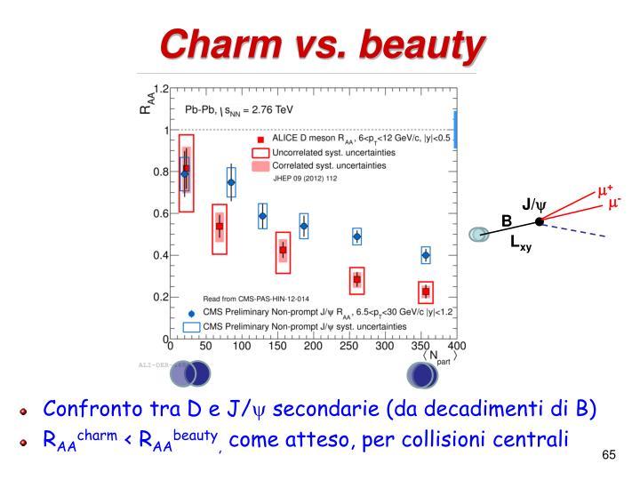 Charm vs. beauty