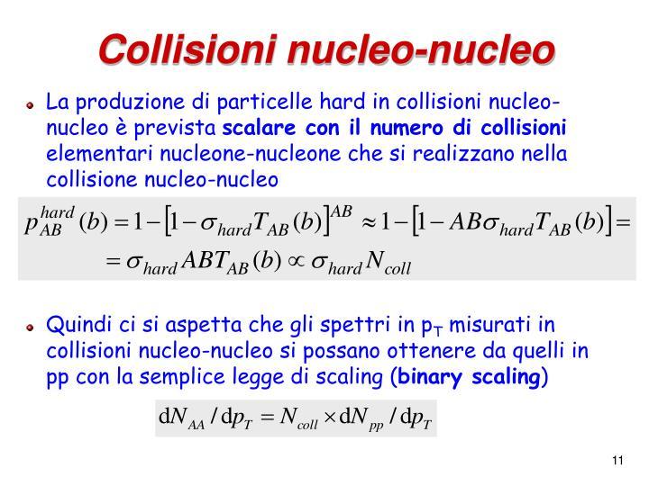 Collisioni nucleo-nucleo