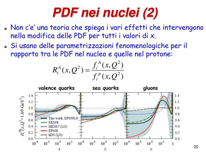 PDF nei nuclei (2)