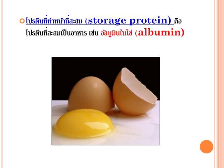โปรตีนที่ทำหน้าที่สะสม (