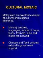 cultural mosaic