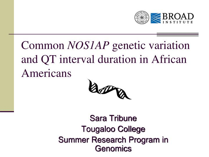 Common nos1ap genetic variation and qt interval duration in african americans