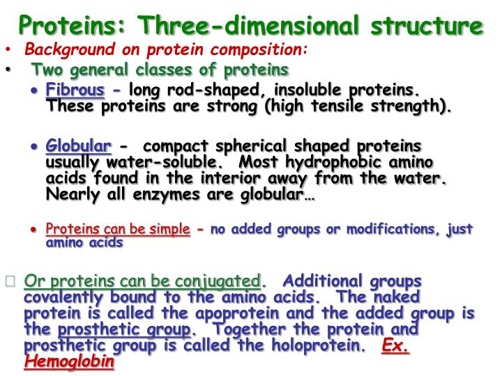 Proteins: Three-dimensional structure
