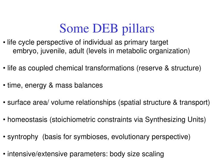Some DEB pillars