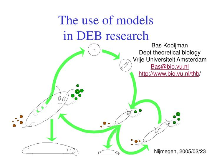 The use of models in deb research