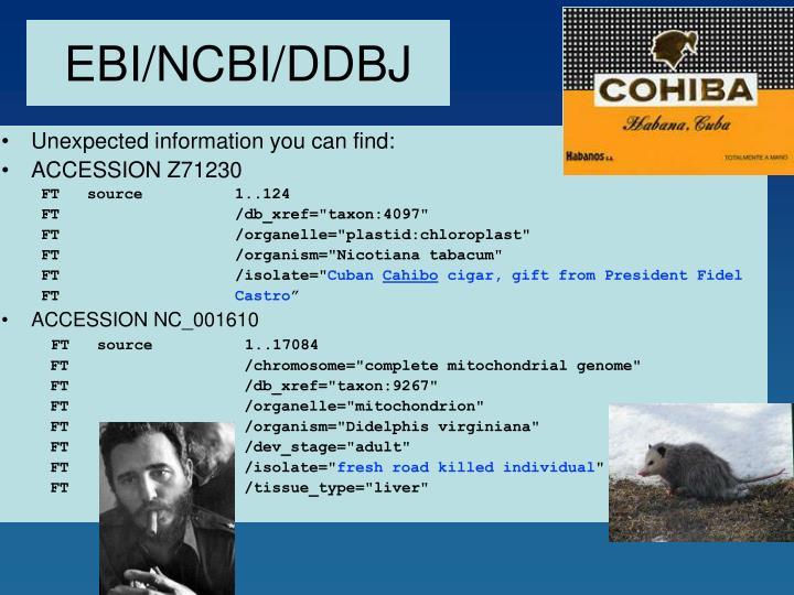 EBI/NCBI/DDBJ