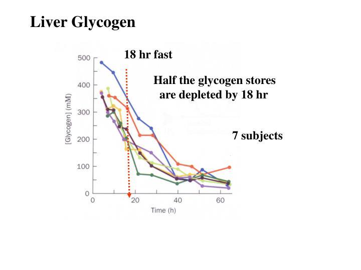 Liver Glycogen