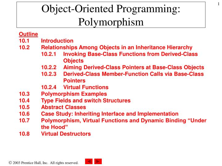 Object oriented programming polymorphism
