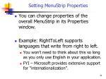setting menustrip properties