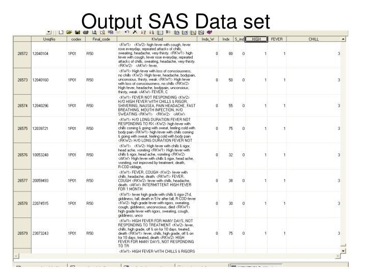 Output SAS Data set