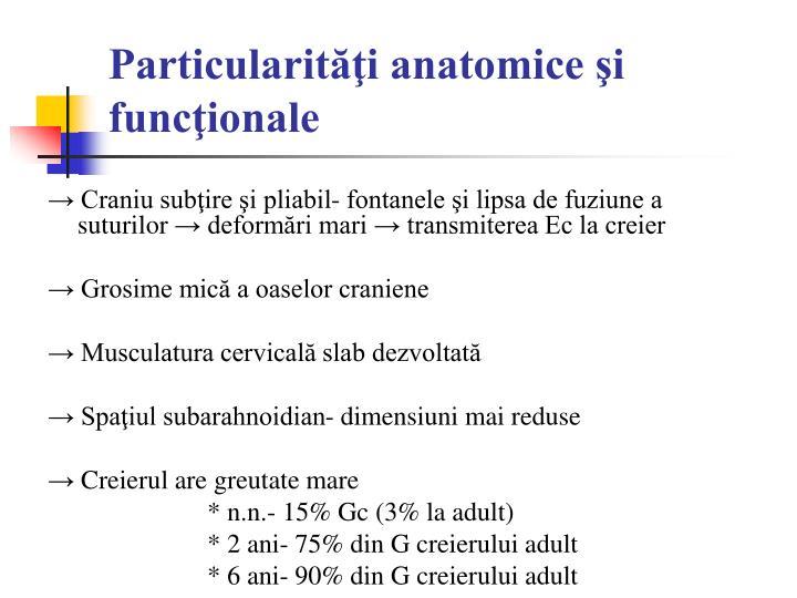 Particularit i anatomice i func ionale