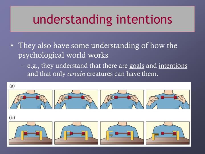 understanding intentions
