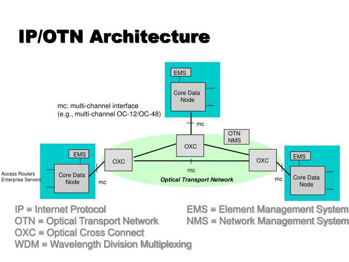 IP/OTN Architecture