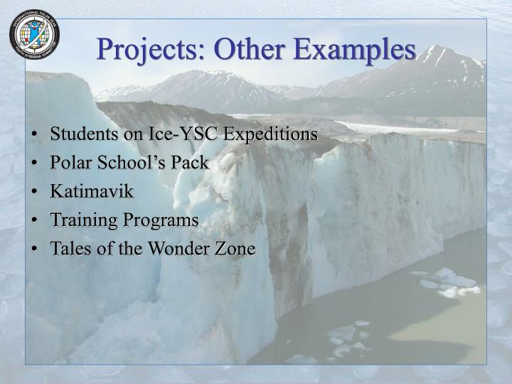 Projects: Other Examples