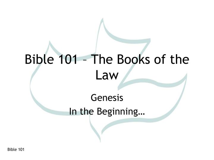 bible 101 the books of the law n.