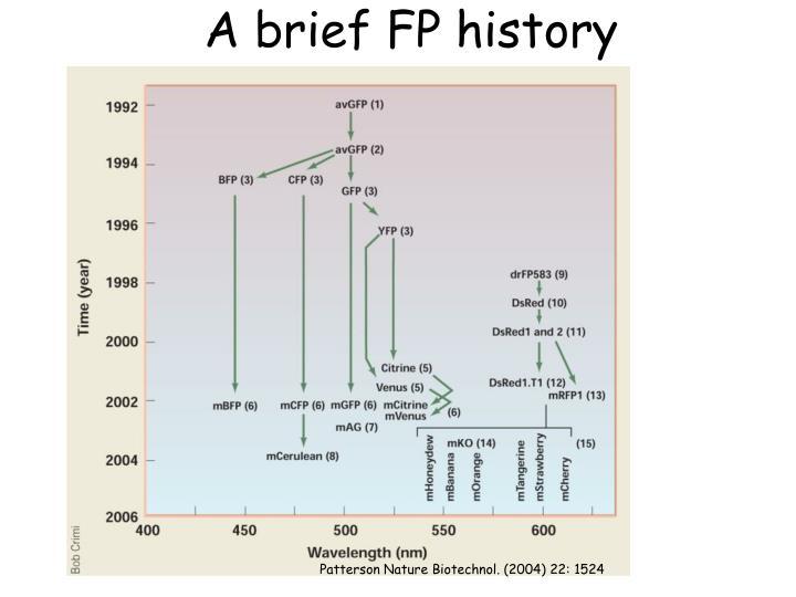 A brief FP history