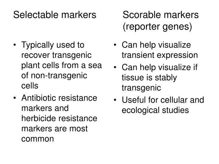 Typically used to recover transgenic plant cells from a sea of non-transgenic cells