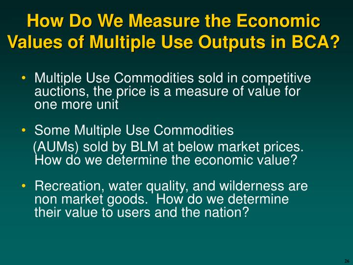 How Do We Measure the Economic Values of Multiple Use Outputs in BCA?