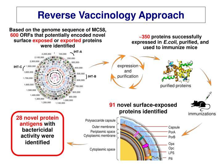 Reverse Vaccinology Approach