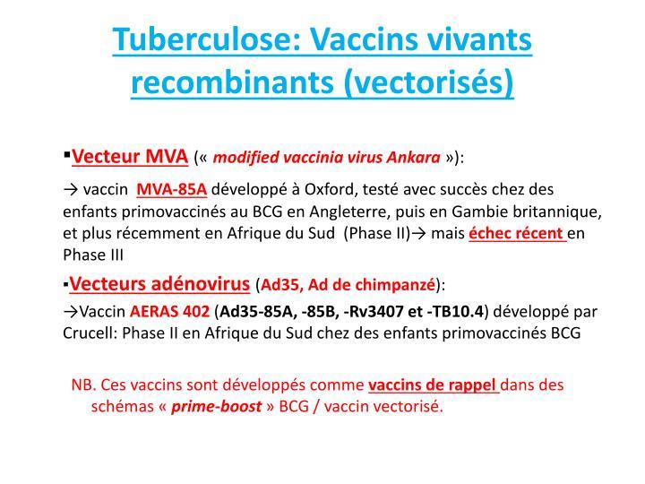 Tuberculose: Vaccins vivants recombinants (vectorisés)