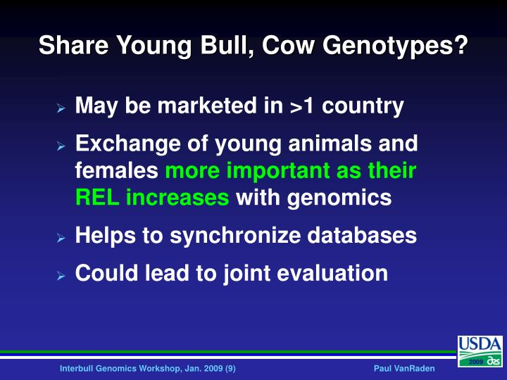 Share Young Bull, Cow Genotypes?