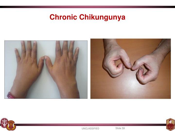Chronic Chikungunya