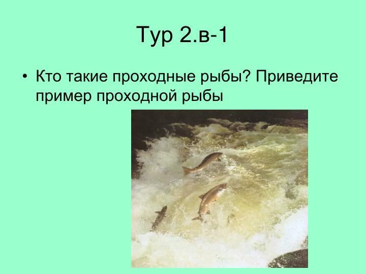 Тур 2.в-1