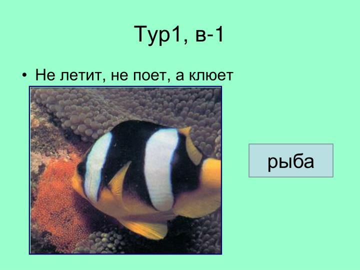 Тур1, в-1