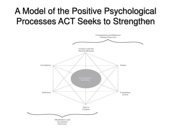 A Model of the Positive Psychological Processes ACT Seeks to Strengthen