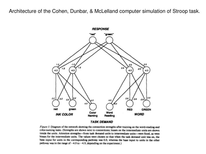 Architecture of the Cohen, Dunbar, & McLelland computer simulation of Stroop task.
