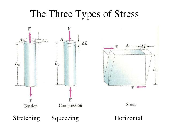 The Three Types of Stress
