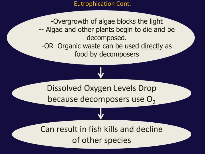 Eutrophication Cont.