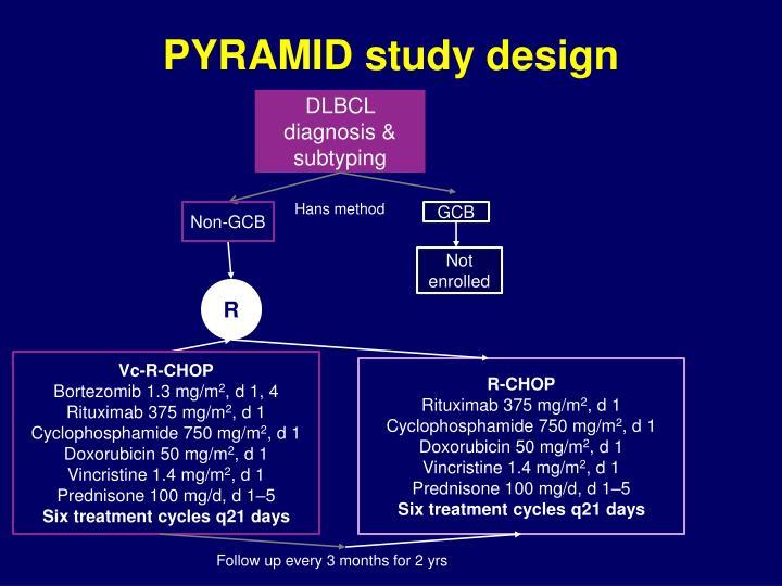 PYRAMID study design