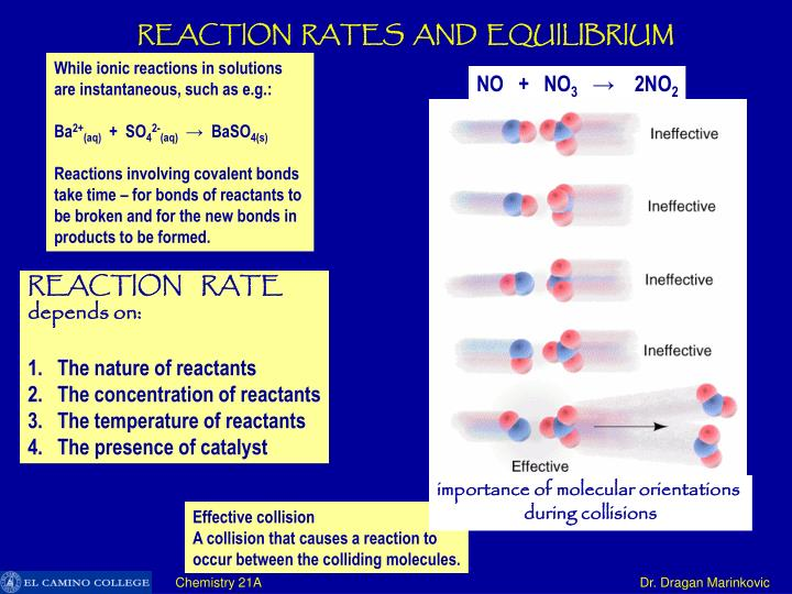 REACTION  RATES  AND  EQUILIBRIUM