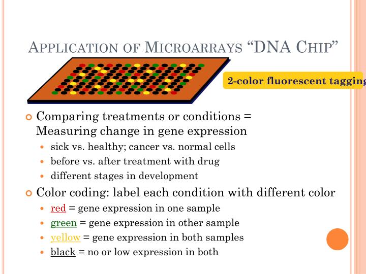 Application of Microarrays