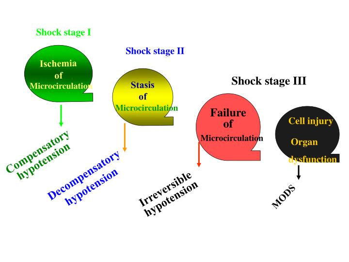 Shock stage I