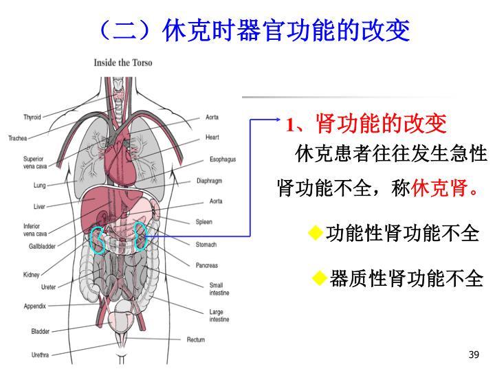 (二)休克时器官功能的改变