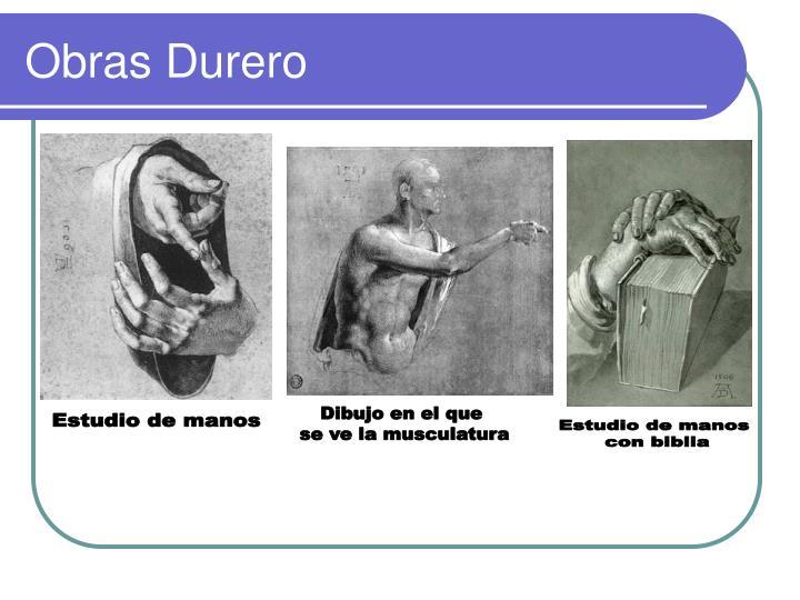 Obras Durero