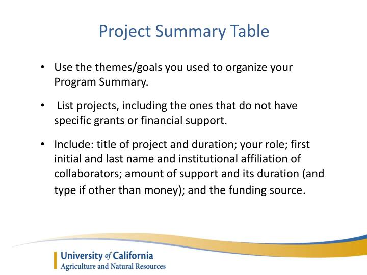 Project Summary Table