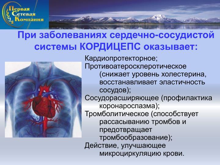 При заболеваниях сердечно-сосудистой системы КОРДИЦЕПС оказывает: