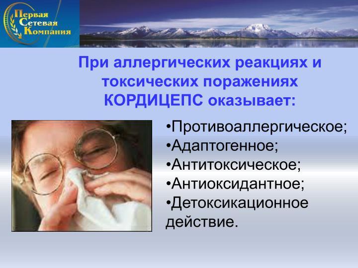 При аллергических реакциях и токсических поражениях КОРДИЦЕПС оказывает: