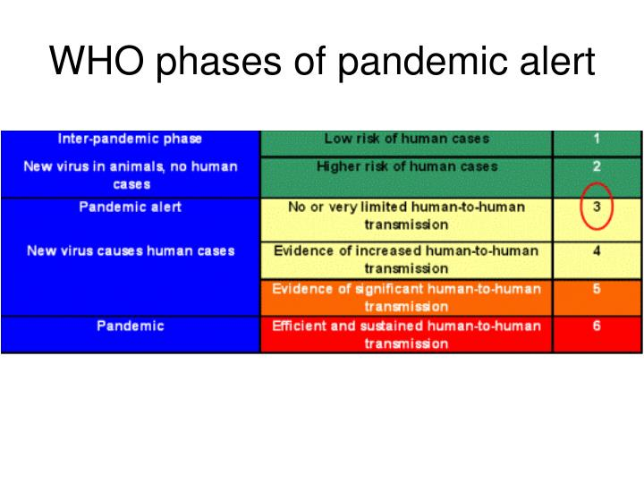 WHO phases of pandemic alert