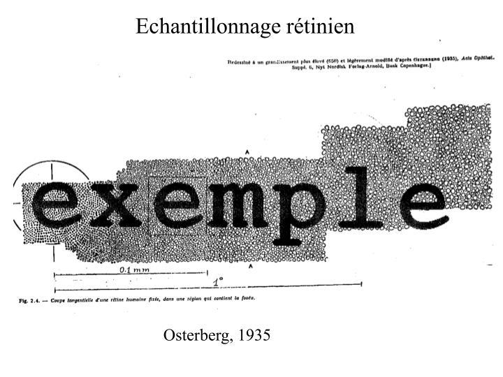 Echantillonnage rétinien