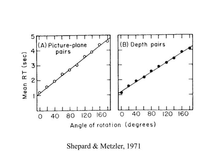 Shepard & Metzler, 1971
